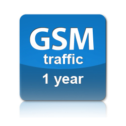 GSM Traffic one year