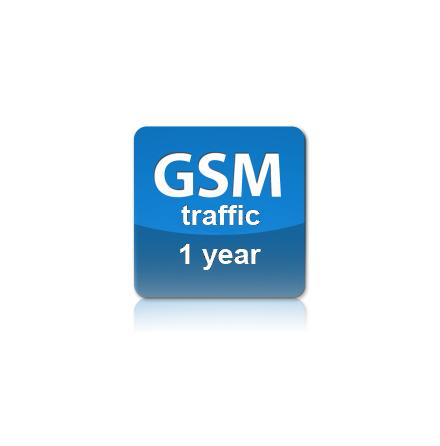 GSM Traffic one year